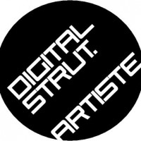 DIGITAL STRUT Logo
